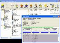 Скриншот Internet Download Manager