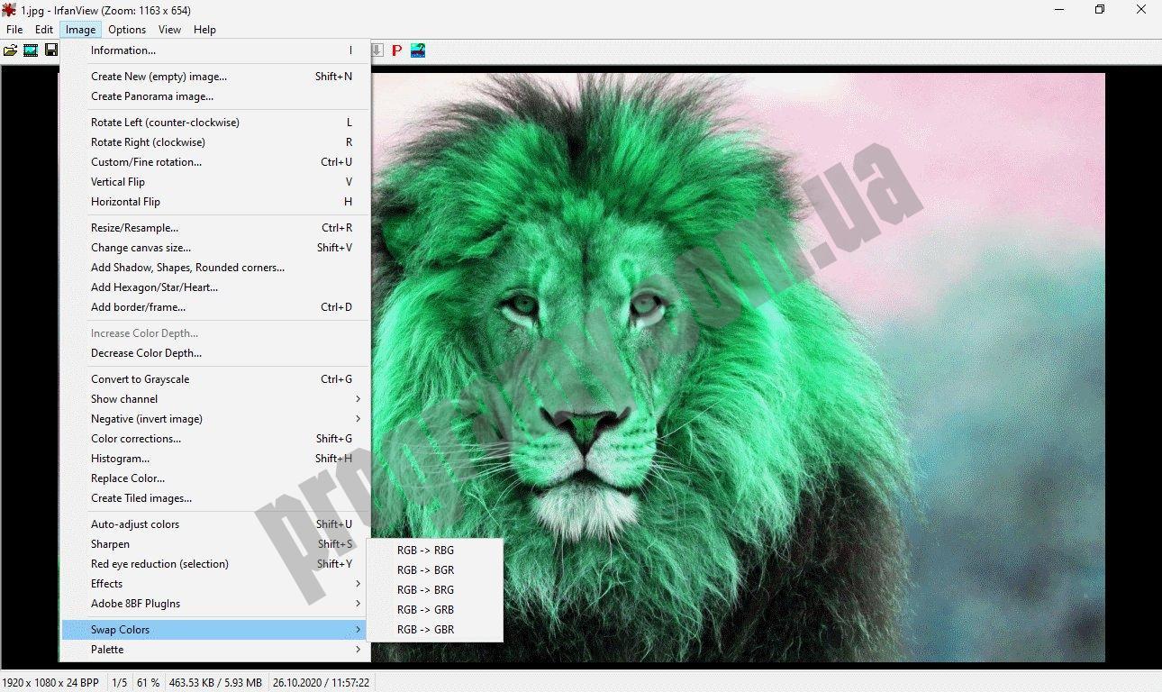 Скриншот IrfanView Portable