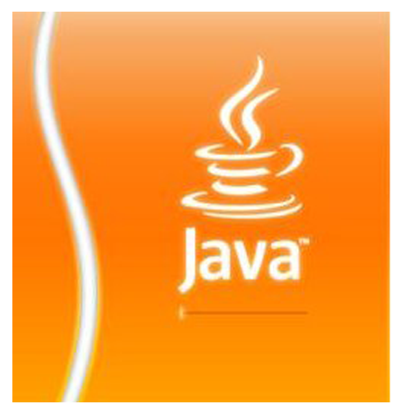 Скриншот Java Runtime Environment