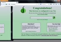 Скриншот Tor Browser